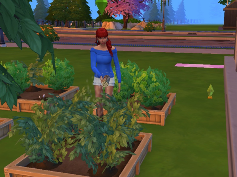 43 Fertilizing, Taking Names