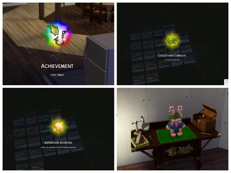 3.achievementcollage